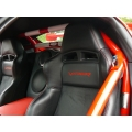 SRT Coupe Rollbar